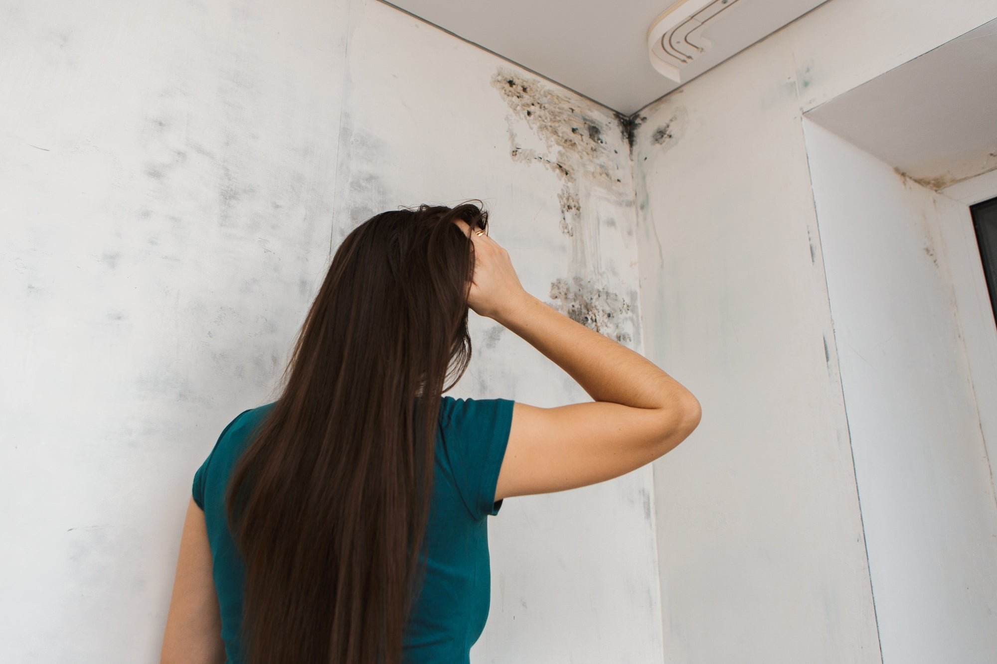 How to Protect Against At-Home Mold