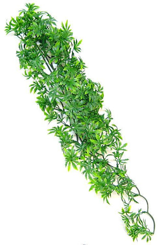 Zoo Med Natural Bush - Canabis Aquarium Plant