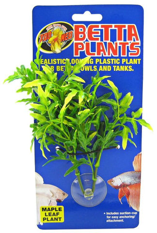 Zoo Med Aquatic Betta Plants - Maple Leaf Plant