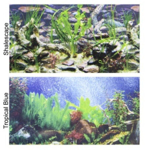 Penn Plax Double-Back Aquarium Background - Tropical Blue / Shalescape