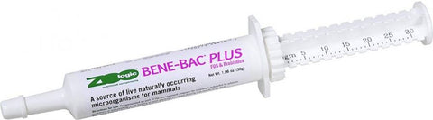 PetAg Zoologic Bene-Bac Plus Mammal Gel