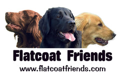 Flatcoat items