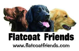 Flatcoat Friends.