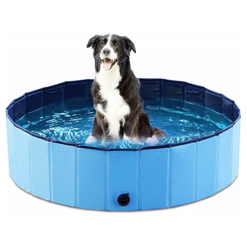 Pet Bathing Pool Blue