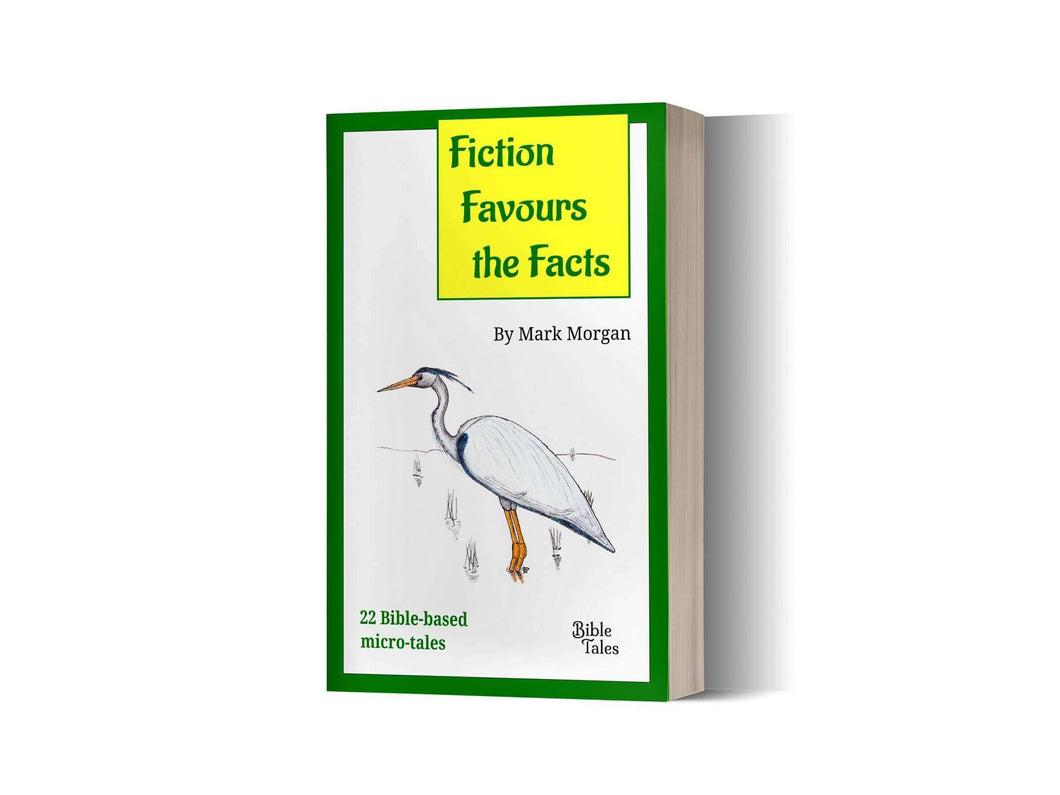 Book cover: Fiction Favours the Facts paperback