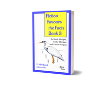 "Load image into Gallery viewer, ""Fiction Favours the Facts – Book 3"""