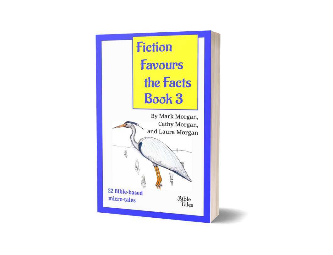 Pre-order: Fiction Favours the Facts – Book 3