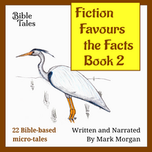 "Load image into Gallery viewer, ""Fiction Favours the Facts – Book 2"" by Mark Morgan"