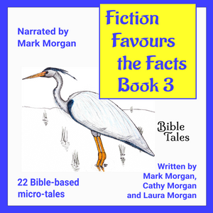 """Fiction Favours the Facts – Book 3"""