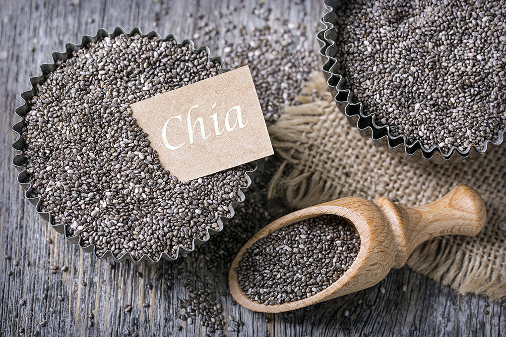 We invite you to discover the power of Chia!