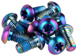 SRAM Titanium T25 Rotor Bolt Kit - Rainbow, Set of 12 - Enroute.cc
