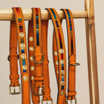 Charger l'image dans la galerie, Tikal • Dog collar • Orange - Hunch Clothes