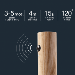 Rechargeable Wooden Motion Sensor Night Light