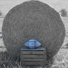Load image into Gallery viewer, Rugby Ball Cushion - Blues