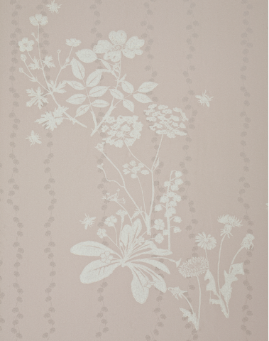 Wild Meadow, Plaster