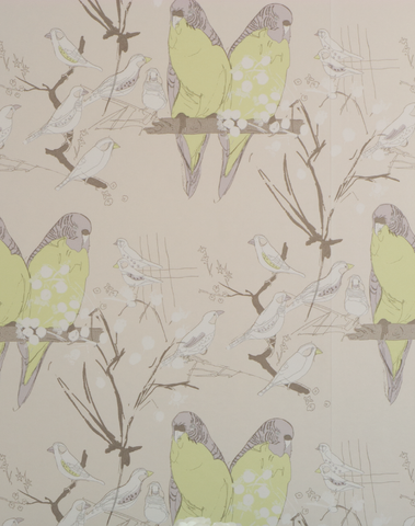 Budgie, Mauve & Lime on Pearl Paper