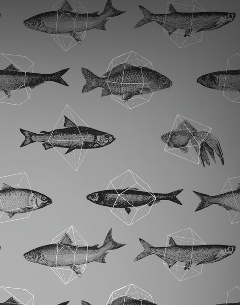 Fishes in Geometrics, Silver