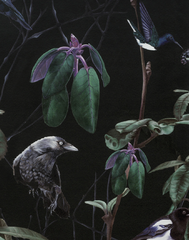 Folia Birds Dark Wallpaper
