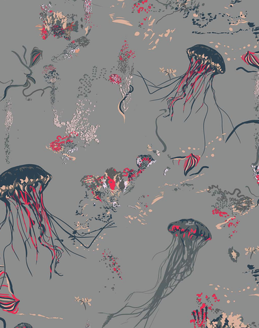 Jellyfish, Grey
