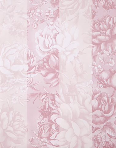 Peony Stripe, Whimsical World