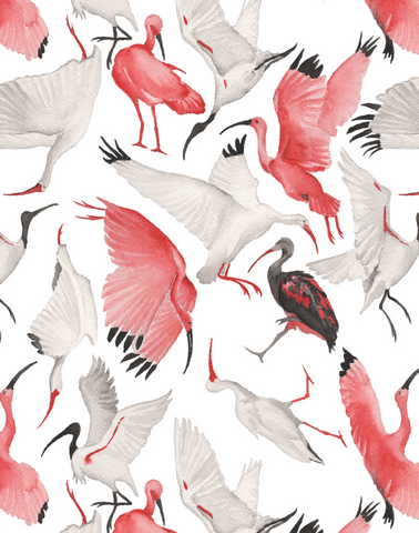 Scarlet and White Ibises, Full Scale