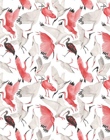 Scarlet and White Ibises, Half Scale