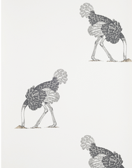 Ostrich Large, Pencil on Bone