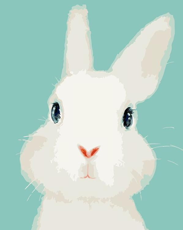 Painting by Numbers - Cute Rabbit