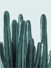 Load image into Gallery viewer, DIY Painting By Numbers - Cactus B