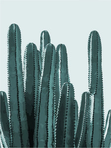 DIY Painting By Numbers - Cactus B