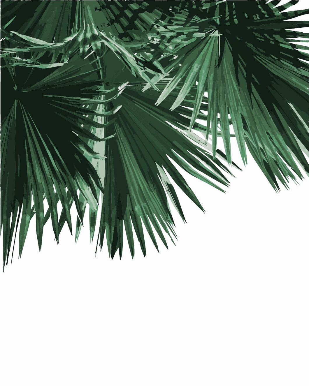 DIY Painting By Numbers - Palm Leaves