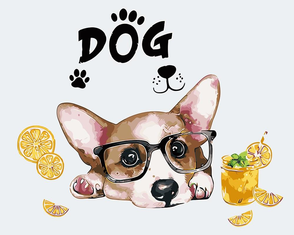 DIY Painting By Numbers -Dog Wear Glasses