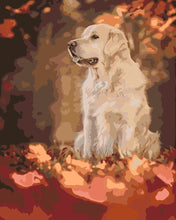 Load image into Gallery viewer, Painting by Numbers - The Dog's Watch