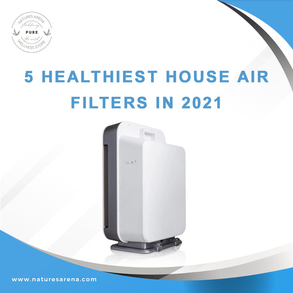 5 Healthiest House Air Filters in 2021