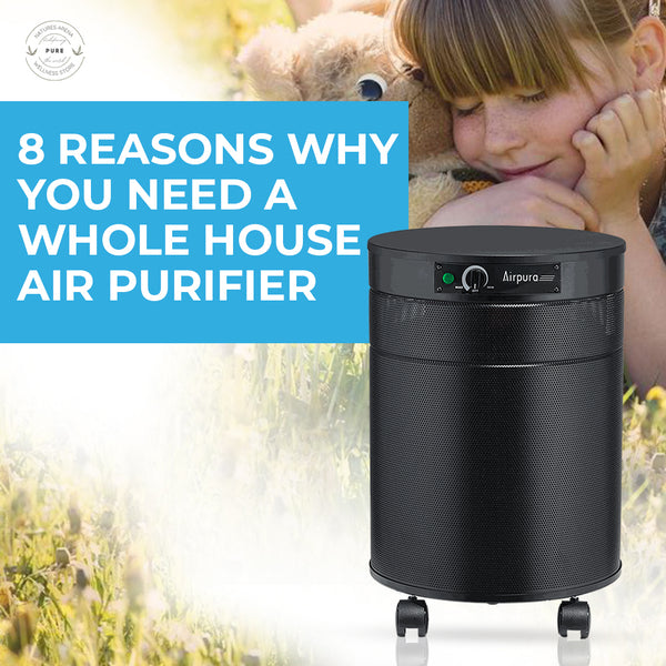 8 Reasons Why You Need a Whole House Air Purifier