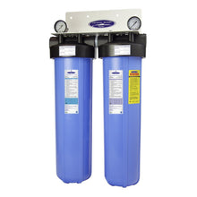 Load image into Gallery viewer, WS Big Blue Whole House Water Filter | Iron, Manganese, Sulfide Removal (4-6 GPM | 1-2 People)