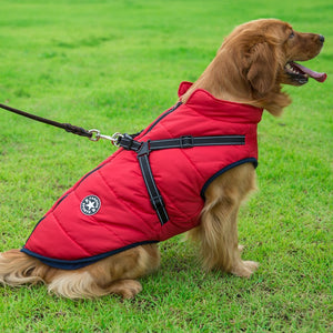Treat your dog to a cotton, warm pet jacket this winter. Featuring a harness, reflective safety strips and waterproof fabrics, this jacket is a must have.