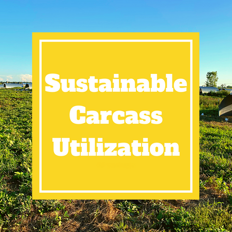 Sustainable Carcass Utilization