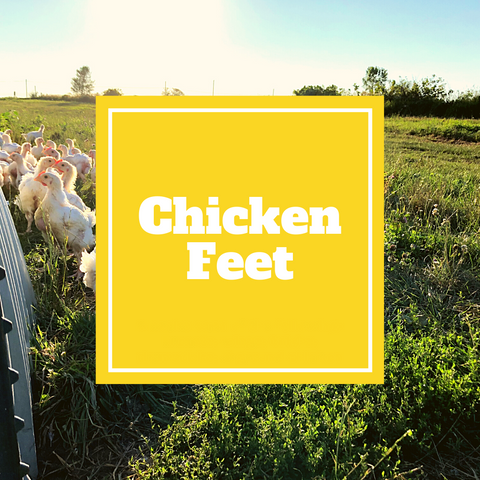 Chicken - Feet - Gunthorp Farms