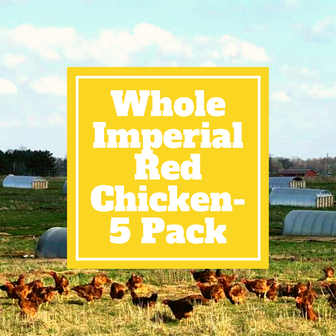 Chicken - Whole Imperial Red Chicken - 5 Pack - Gunthorp Farms