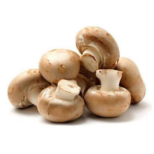 MUSHROOMS BROWN BUTTON PP EACH
