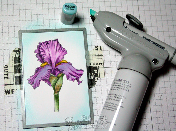 Adding Copic Airbrush to Purple Iris