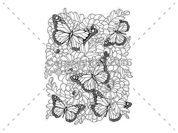 Downloadable Line Art for Coloring- Butterflies