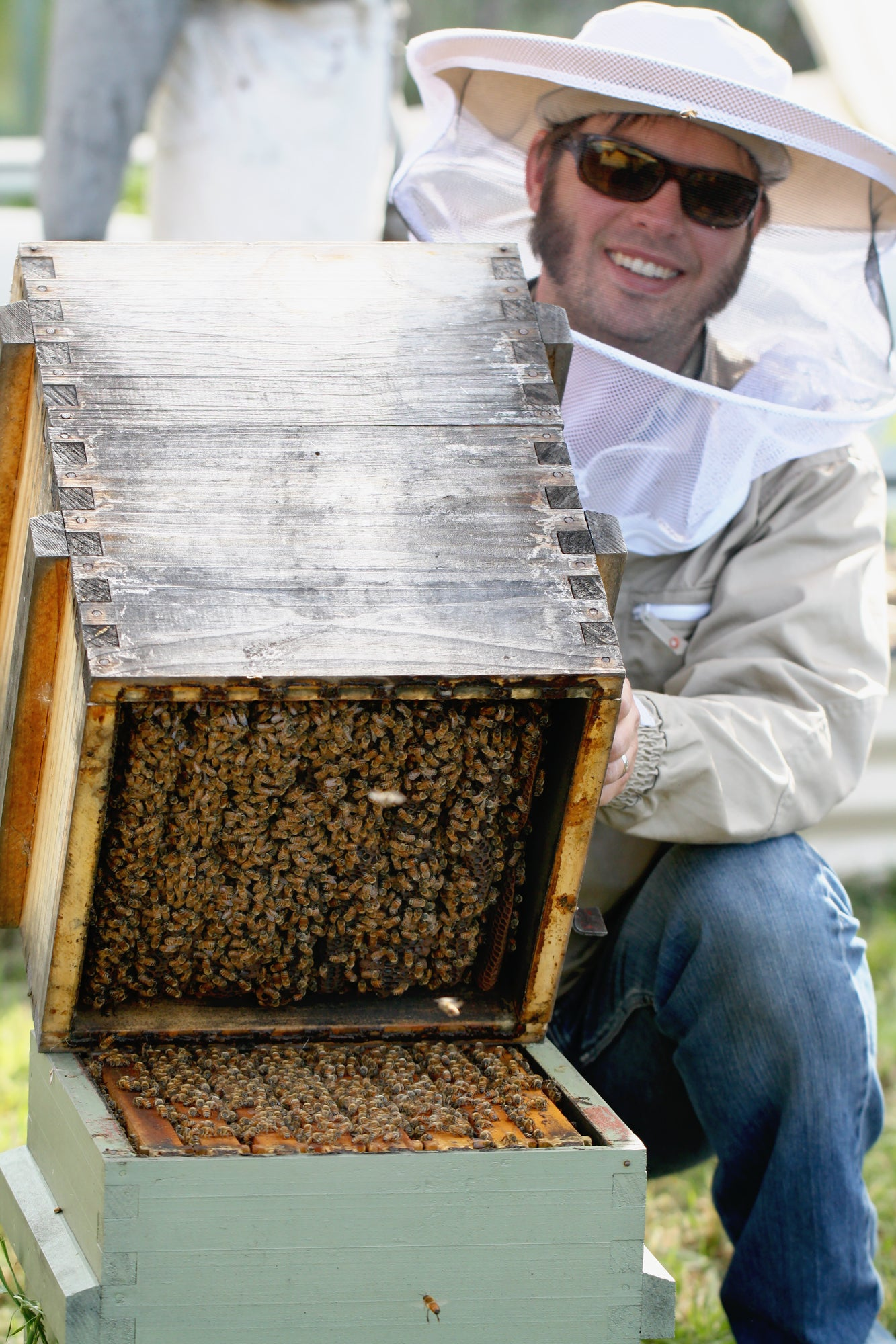 Malfroy's Gold Warré hive tilting method