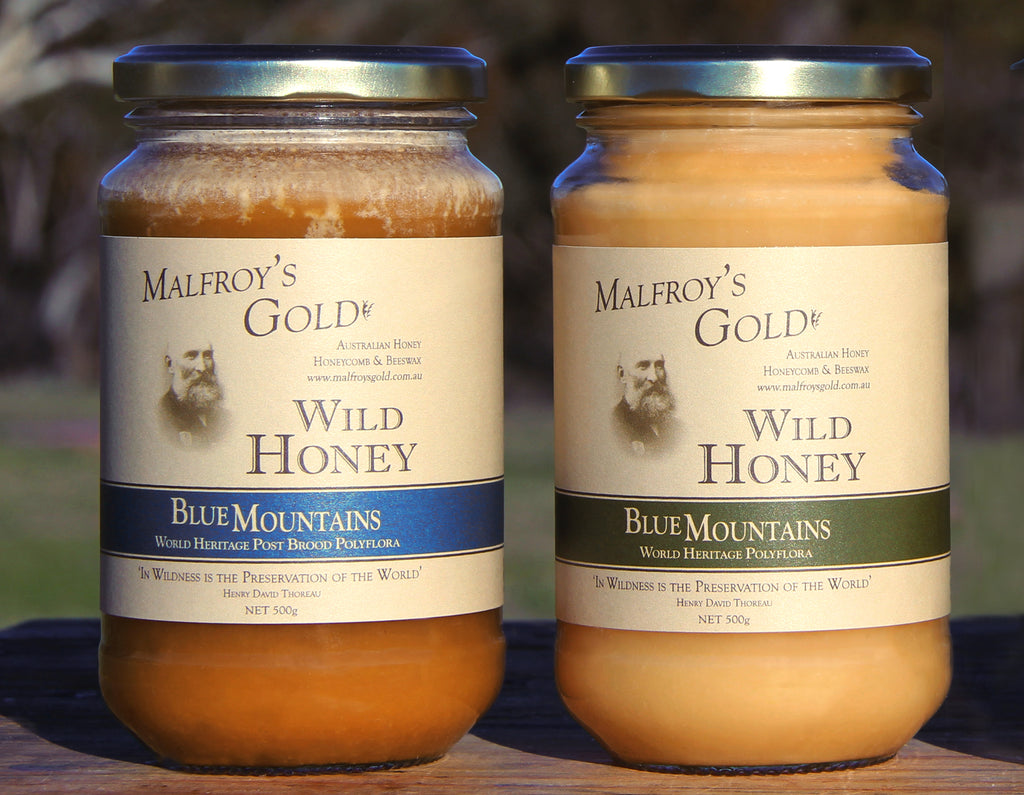 Malfroy's Gold Post Brood and Polyflora Wild Honey