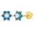 14k Yellow Gold Cubic Zirconia Flower Screw Back Earrings for Girls