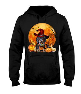 Trick Halloween - Dog - Dachshund Hooded Sweatshirt