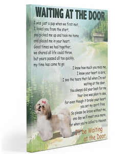 Shih Tzu waiting at the door Gallery Wrapped Canvas Prints