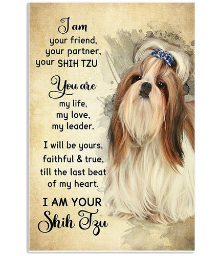 Shih Tzu Canvas - I Am Your Friend, You are my life my love