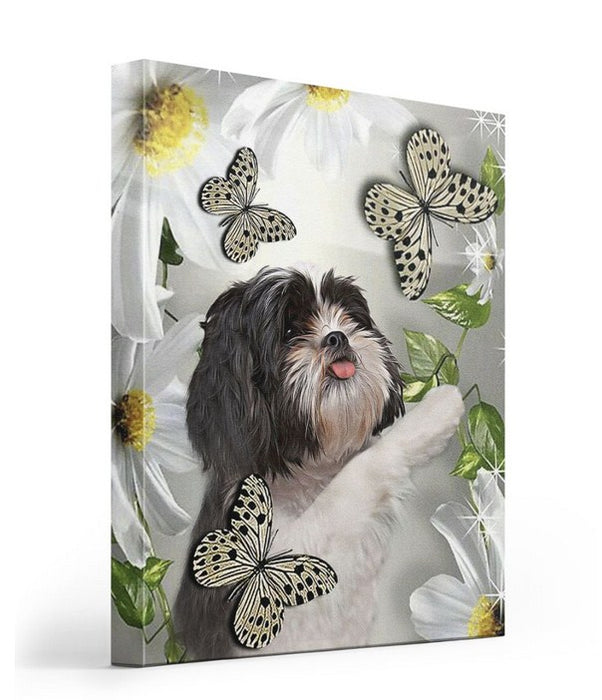 Shih tzu daisy and butterfly Gallery Wrapped Canvas Prints